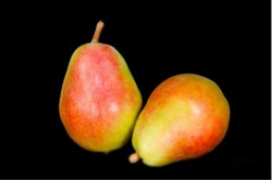 Compra Fruta de Temporada | PERA MORATINI | FrutasNieves