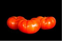 Compra Verdura, Hortalizas de Temporada | TOMATE GALLEGO | FrutasNieves