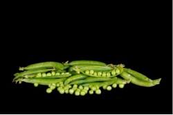 Compra Verdura, Hortalizas de Temporada   GUISANTES   FrutasNieves