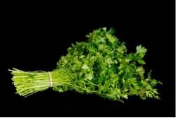 Compra Verdura, Hortalizas de Temporada | PEREJIL | FrutasNieves