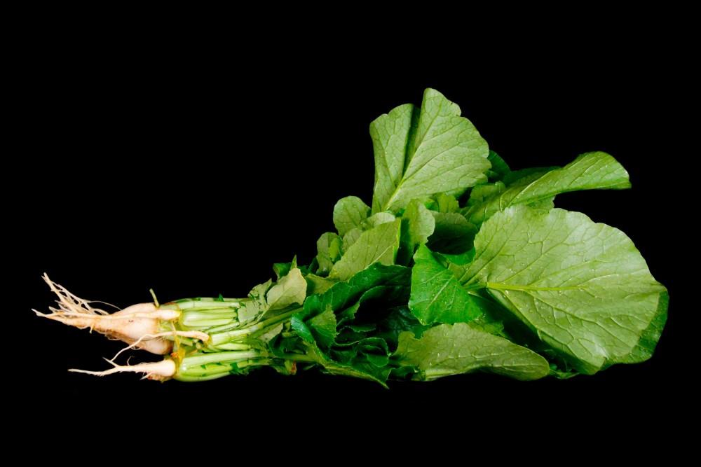 Compra Verdura, Hortalizas de Temporada | NABIZAS | FrutasNieves