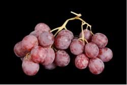 Compra Fruta de Temporada | UVA RED GLOBE | FrutasNieves