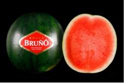 Compra Fruta de Temporada | SANDIA VERDE SIN PEPITA | FrutasNieves
