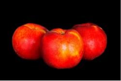 Compra Fruta de Temporada | PELADILLO ROJO EXTRA | FrutasNieves