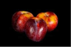 Compra Fruta de Temporada | CIRUELA LARRY | FrutasNieves