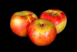 Compra Fruta de Temporada | MANZANA AKANE I | FrutasNieves
