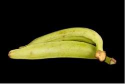 Compra Fruta de Temporada | PLATANO DE FREIR | FrutasNieves