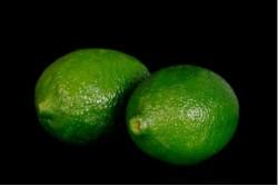 Compra Fruta de Temporada | LIMA | FrutasNieves