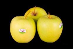 Compra Fruta de Temporada | MANZANA GOLDEN PERLIN | FrutasNieves