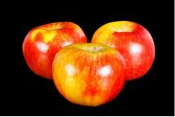 Compra Fruta de Temporada | MANZANA RED WINTER | FrutasNieves