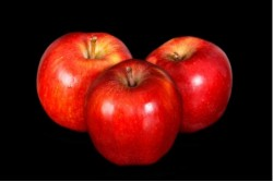 Compra Fruta de Temporada | MANZANA RED CHIEF | FrutasNieves