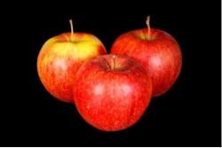 Compra Fruta de Temporada | MANZANA JONAGORED I | FrutasNieves