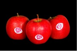 Compra Fruta de Temporada | MANZANA PINK LADY | FrutasNieves