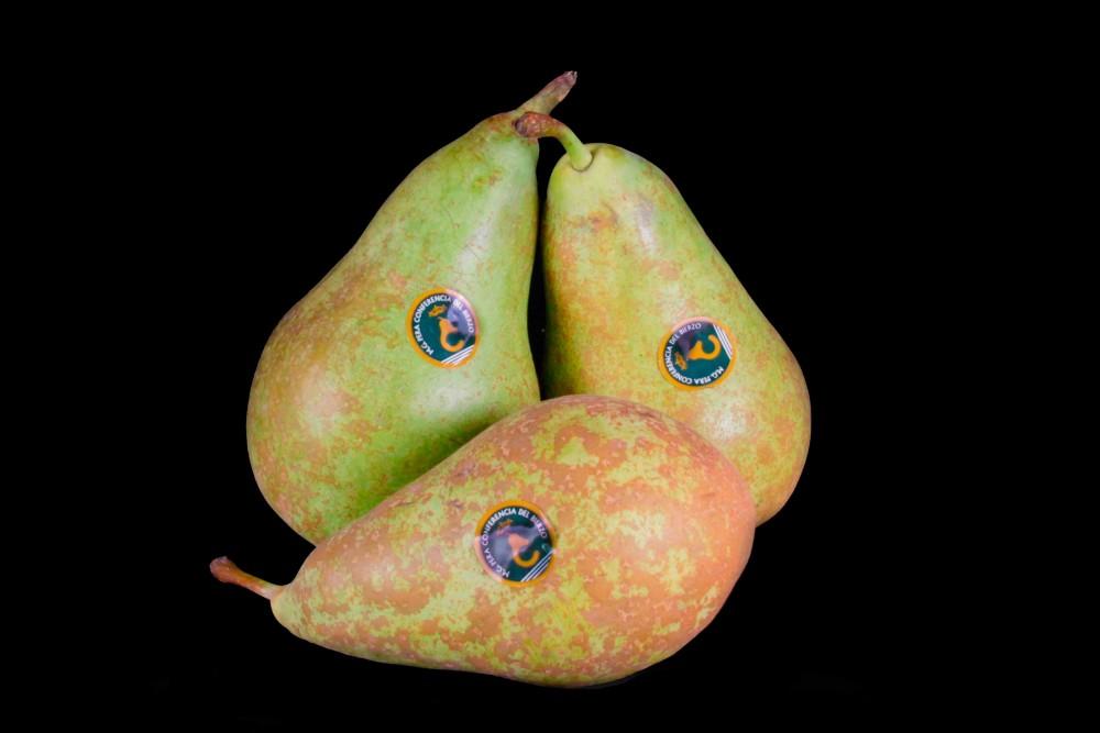 Compra Fruta de Temporada   PERA CONFERENCIA   FrutasNieves
