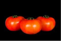 Compra Verdura, Hortalizas de Temporada | TOMATE ENSALADA EXTRA | FrutasNieves