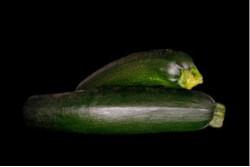 Compra Verdura, Hortalizas de Temporada | CALABACIN | FrutasNieves
