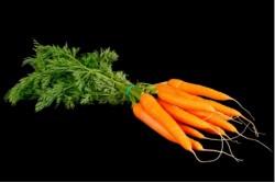 Compra Verdura, Hortalizas de Temporada | ZANAHORIAS EN RAMA | FrutasNieves