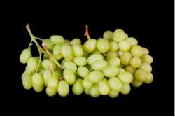 Compra Fruta de Temporada | UVA BLANCA SIN PEPITA | FrutasNieves