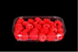 Compra Fruta de Temporada | FRAMBUESAS | FrutasNieves