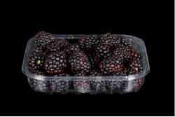 Compra Fruta de Temporada | MORAS | FrutasNieves