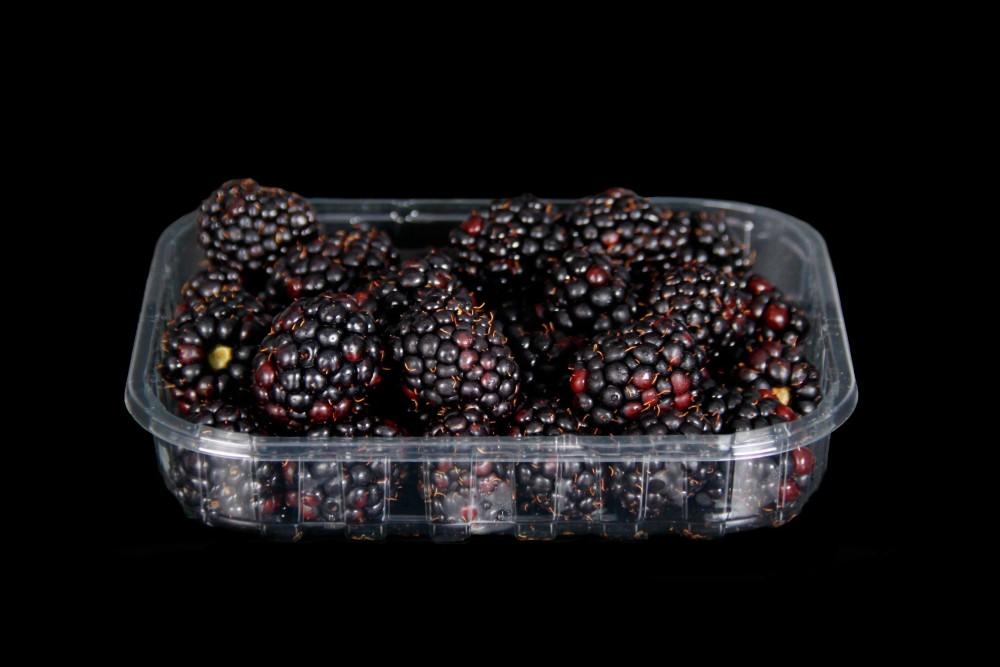 Compra Fruta de Temporada   MORAS   FrutasNieves