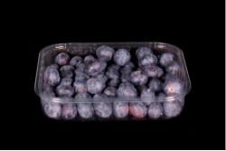 Compra Fruta de Temporada | ARANDANOS SILVESTRES | FrutasNieves
