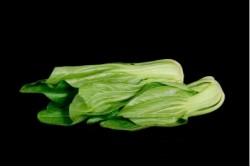 Compra Verdura, Hortalizas de Temporada | CHOI VERDE | FrutasNieves
