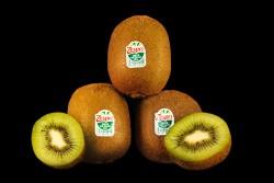 Compra Fruta de Temporada | KIWI ZESPRI | FrutasNieves