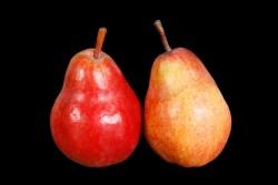 Compra Fruta de Temporada | PERA BARLET | FrutasNieves