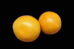 Compra Fruta de Temporada | POMELO | FrutasNieves