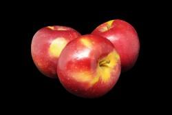 Compra Fruta de Temporada | MANZANA KING DAVIS I | FrutasNieves