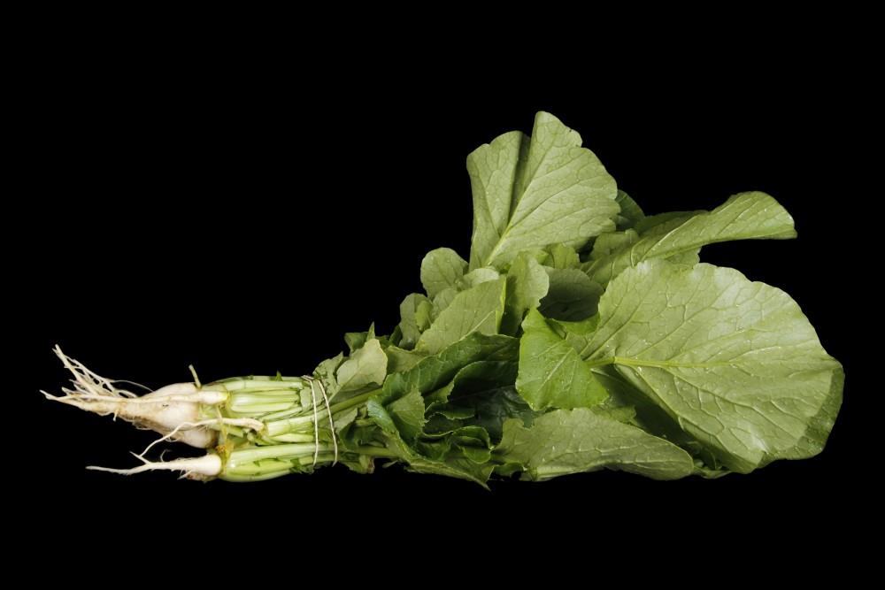 Compra Verdura, Hortalizas de Temporada | NABIZA DE SANTIAGO | FrutasNieves