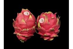Compra Fruta de Temporada | PITAHAYA ROJA | FrutasNieves