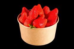 Compra Fruta de Temporada | FRESON | FrutasNieves