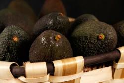 Compra Fruta de Temporada   AGUACATE PREMADURADO   FrutasNieves