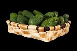 Compra Fruta de Temporada | AGUACATE | FrutasNieves