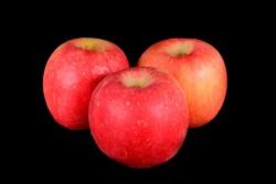Compra Fruta de Temporada | MANZANA FUJI | FrutasNieves