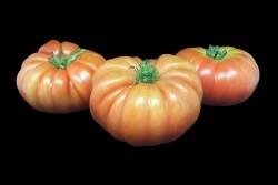 Compra Verdura, Hortalizas de Temporada |TOMATE ROSADO | FrutasNieves